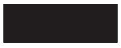 Dinh Van logo