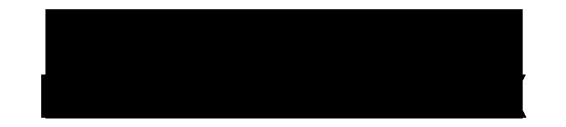 logo Vincent Delesvaux